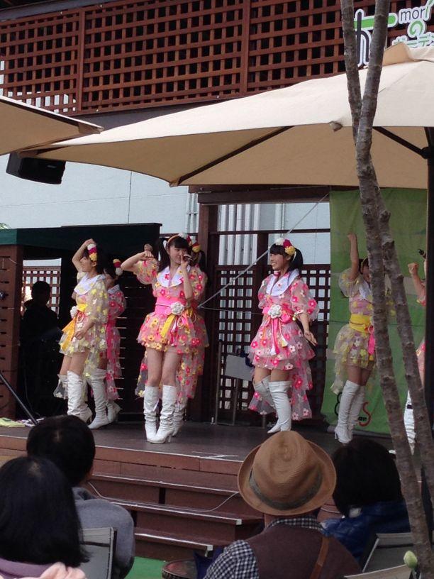 Michinokuseidaiorihimetai_4